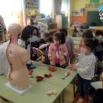 La Mujer Gigante 2_0 colegios